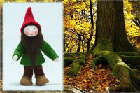 Ambrosius Forest Gnome, Christmas colours