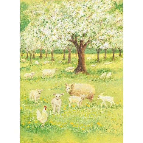 Lambs in the orchard postcard