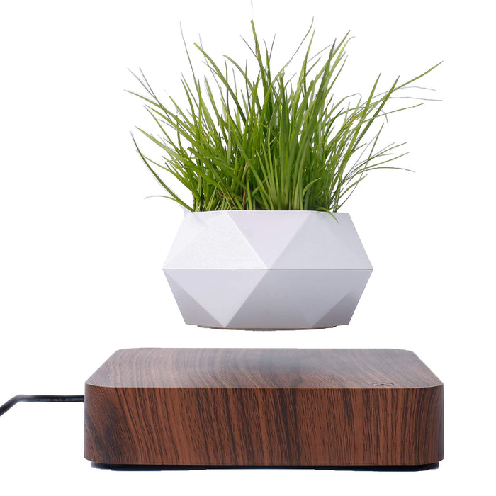 Air Plant Pots,Floating Planter