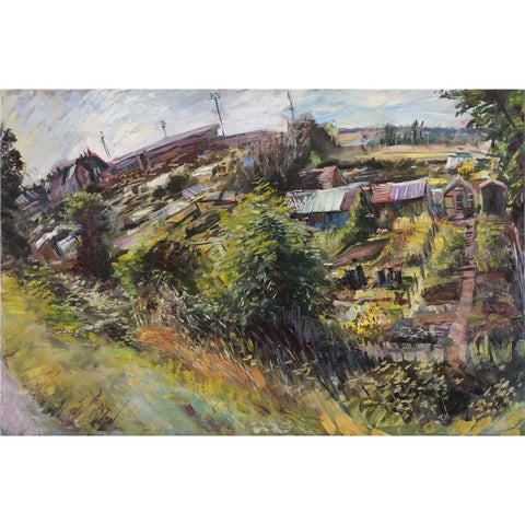 Dolly Lane Allotments by Rob Pointon
