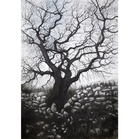 David Brammeld Print Moorland Tree Limited Edition Print by David Brammeld