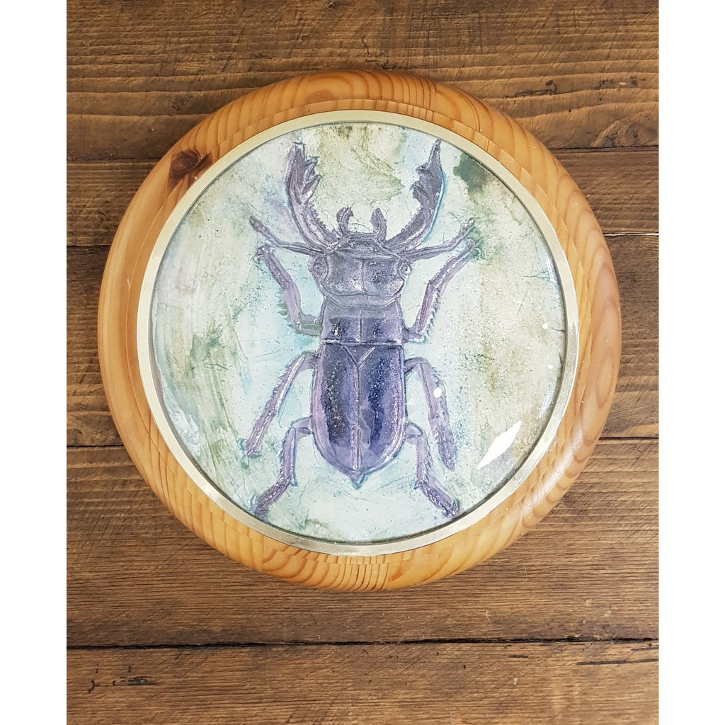 Philip Hardaker Ceramics Stag Beetle Framed by Philip Hardaker