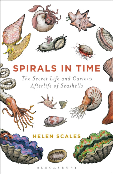 Spirals in Time