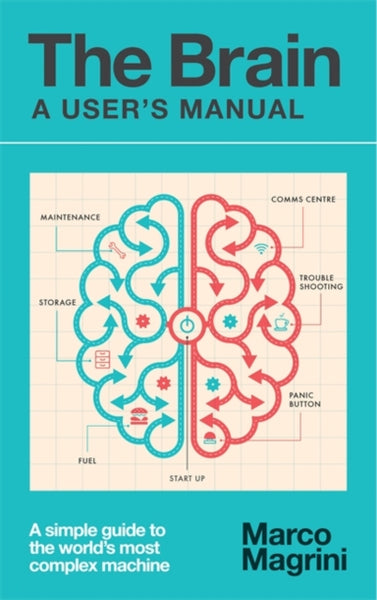 The Brain: A User's Manual