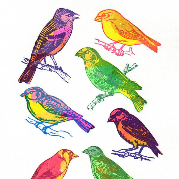 Finches mini screen print