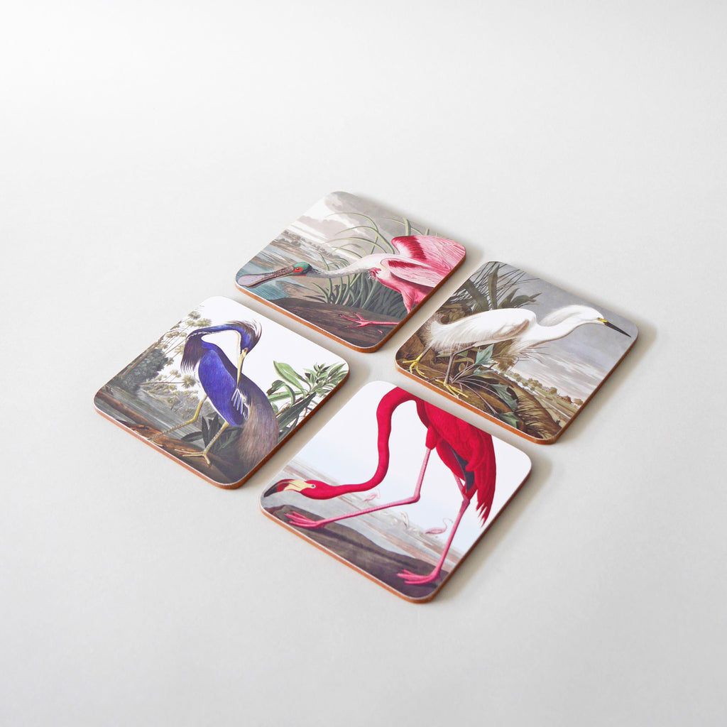 Birds of America Coasters