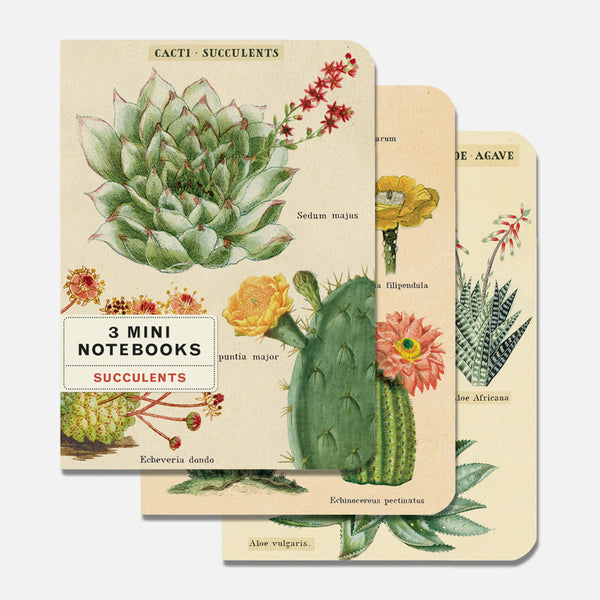 Succulents Mini Notebooks