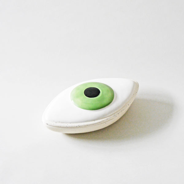 Eye Organs Storage Box