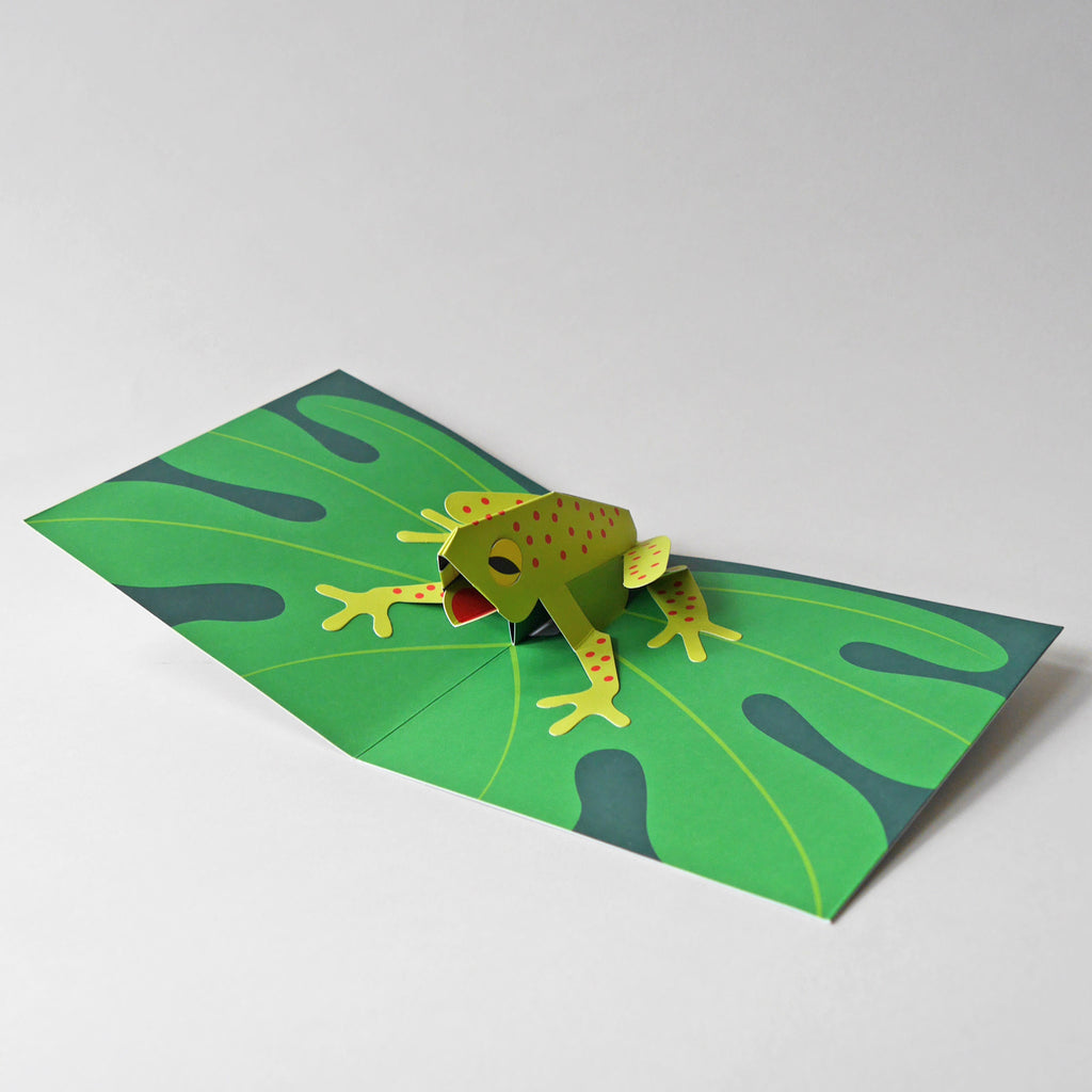Animal Pop-Up Cards