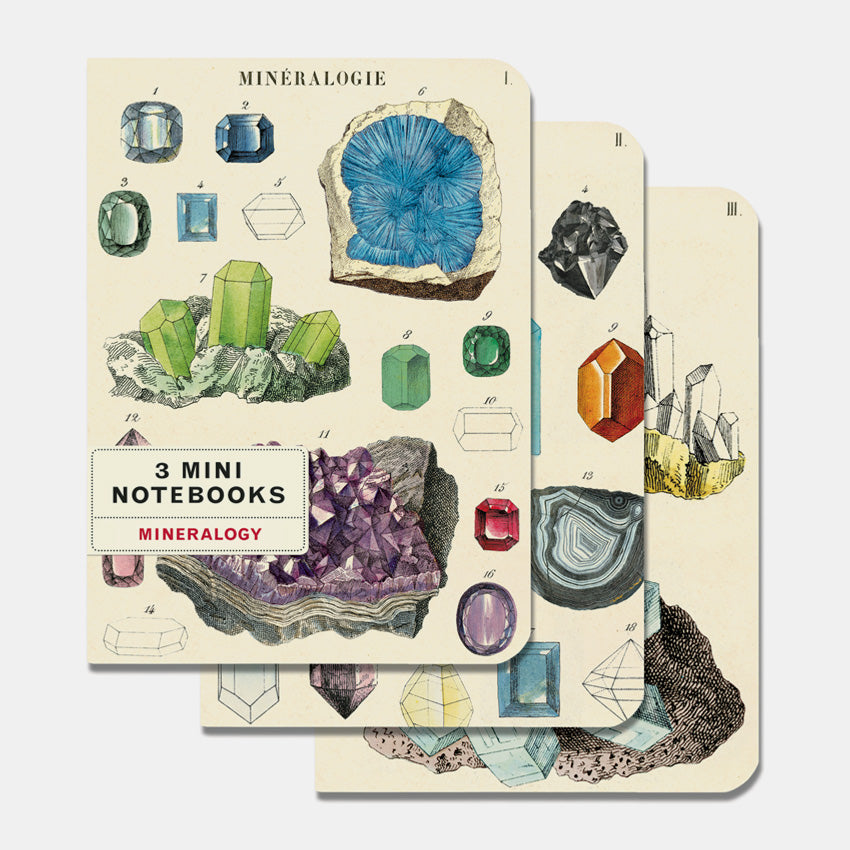 Mineralogy Mini Notebooks