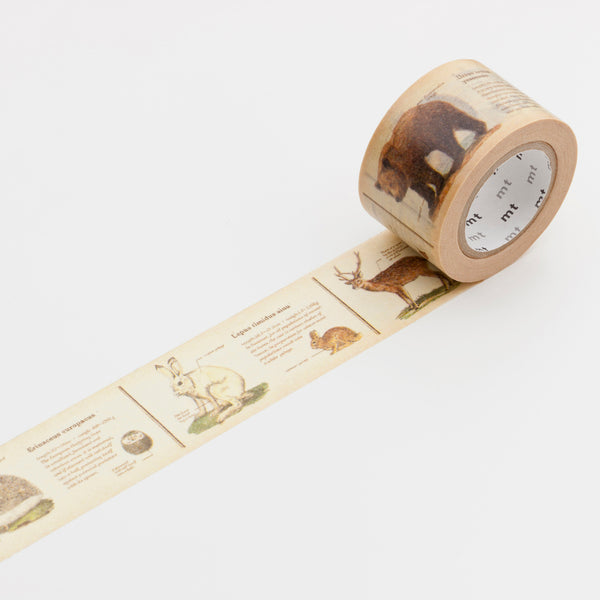 Encyclopedia Animals MT Washi Tape