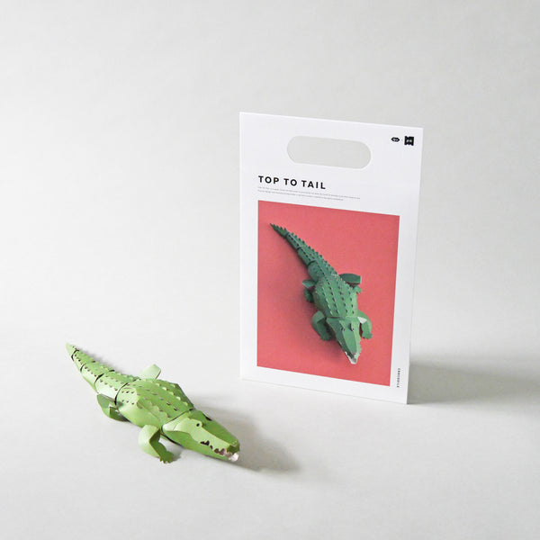 Top to Tail Paper Model Kit | Crocodile