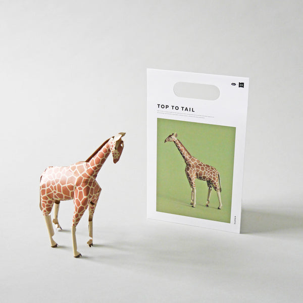 Top to Tail Paper Model Kit | Giraffe