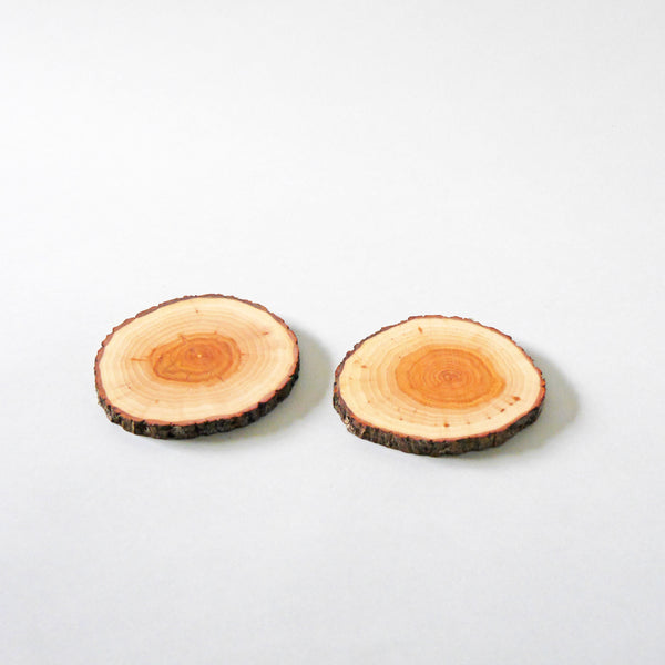 Tree 4 Tea Wooden Coasters