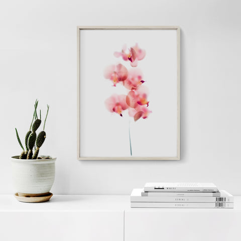 Pink orchid floral art print framed and hanging on the wall