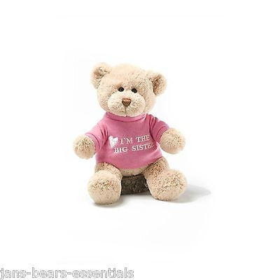 Gund - I'm the Big Sister Message Bear - 12""