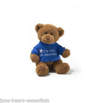 Gund - I'm the Big Brother Message Bear - 12""