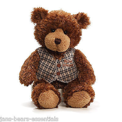 Gund - Raymond, Father's Day Bear - 12""