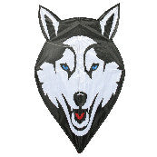 "Skydog Kites - 36"" Wolf Kite - Smooth Wind Kites - 1"