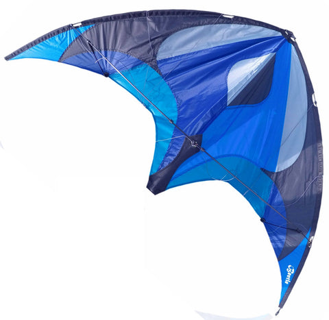 Flying Wings Kites - Beetle - Smooth Wind Kites - 1