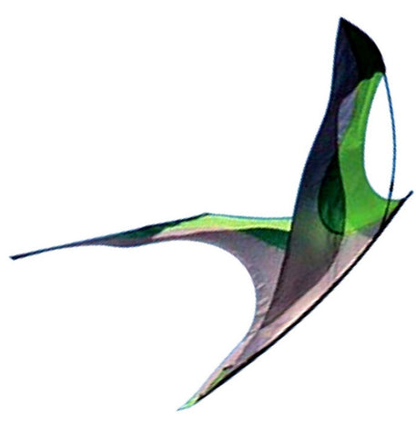 Flying Wings Kites - Laima - Smooth Wind Kites - 1