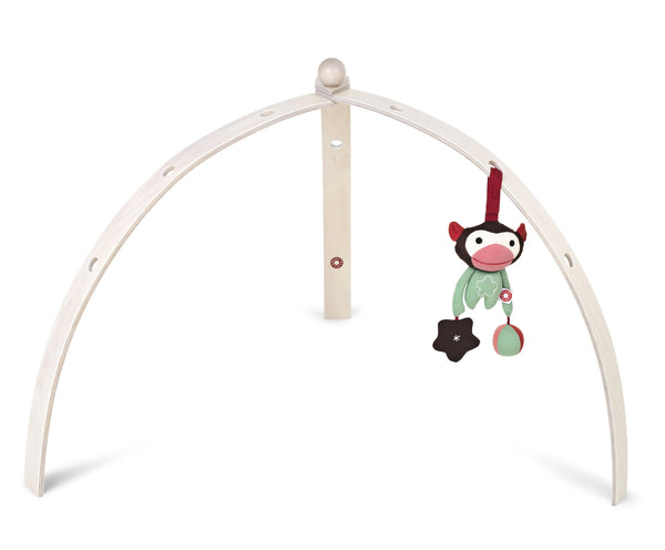 Baby Gym Spyder Activity Play Gym