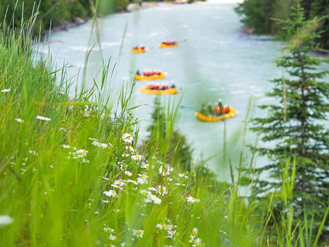Glacier Rafting on Kicking Horse River in Golden BC