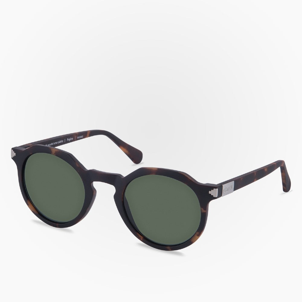 Side view of the Sunglasses Pinguino Karun color Havana Brown made with ECONYLu00ae regenerated nylon