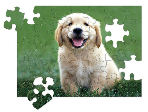 Golden Retriever Puppy 30- Piece Cardboard Jigsaw Puzzle - Melissa and Doug