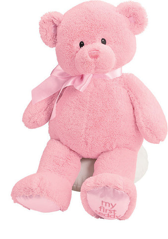 "My First Teddy 18"" Plush Teddy Bear Pink - GUND Baby"