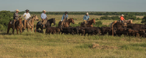 150 years of cowboy traditions are alive and well at the Wellborn 2R Ranch