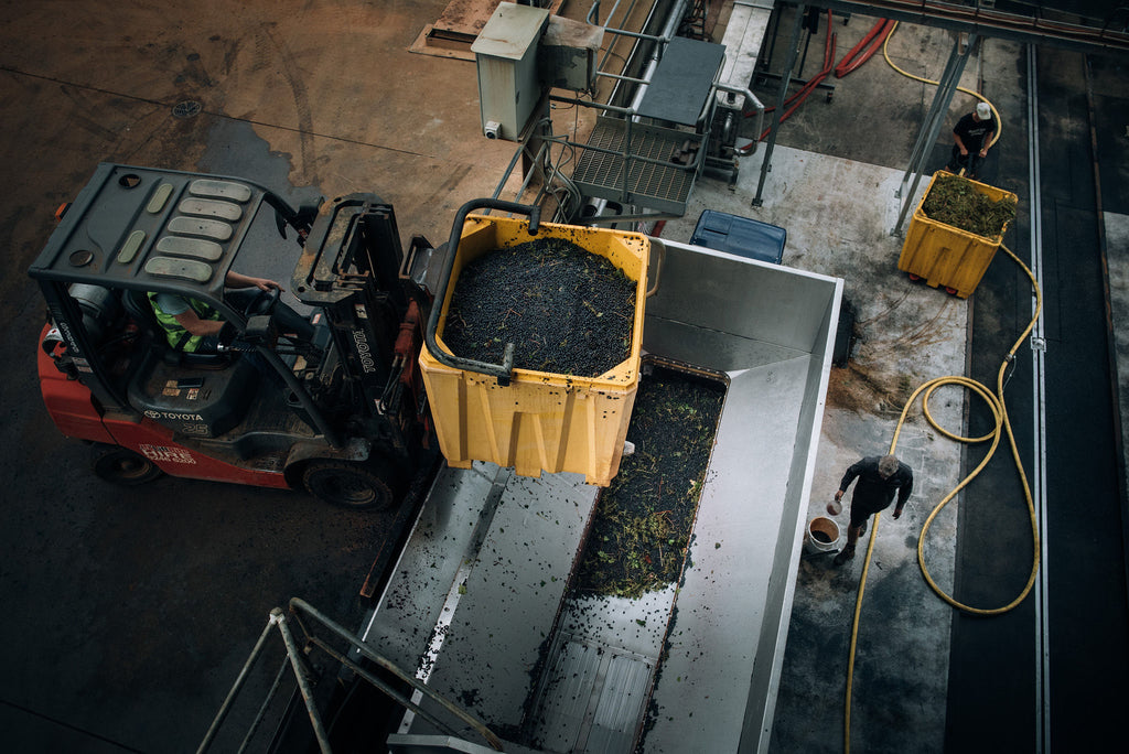 Contract Winemaking Services at Flying Fish Cove - Margaret River - Western Australia