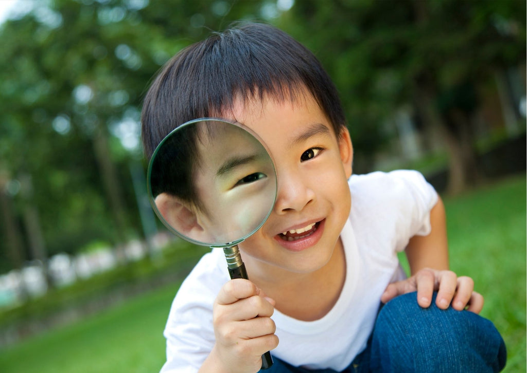 Little boy with magnifying glass against parkland backdrop