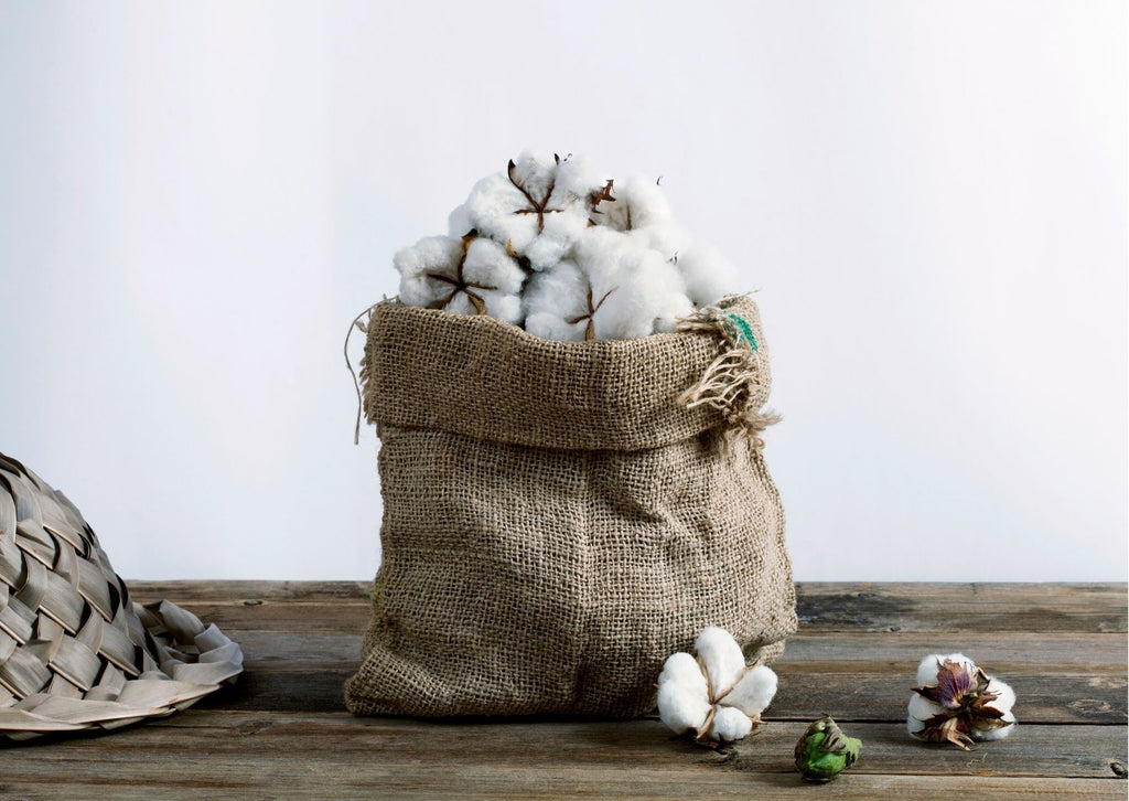 A brown sack of cotton balls against a white background.