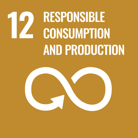 UN Sustainable Development Goal 12: responsible consumption and productions