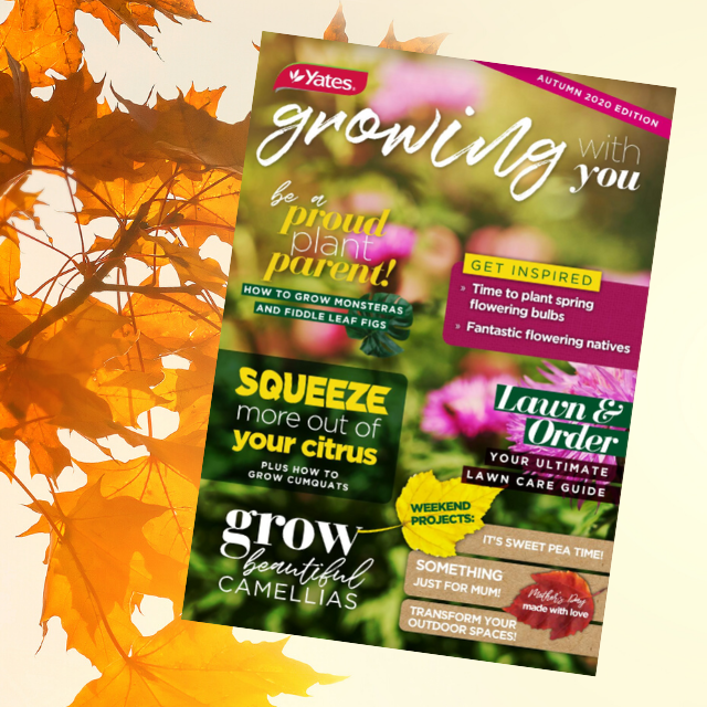 Growing With You Autumn eMagazine