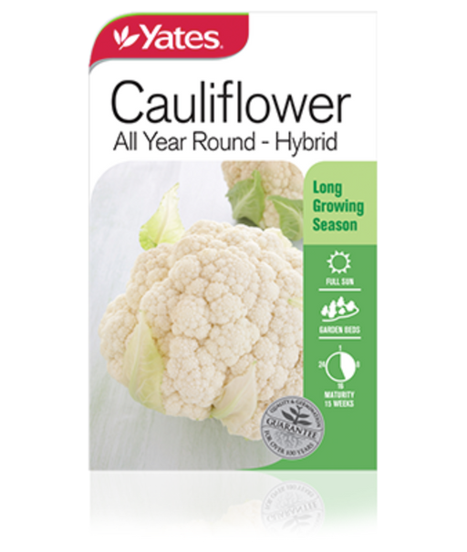 Cauliflower All Year Round - Hybrid - Yates Australia