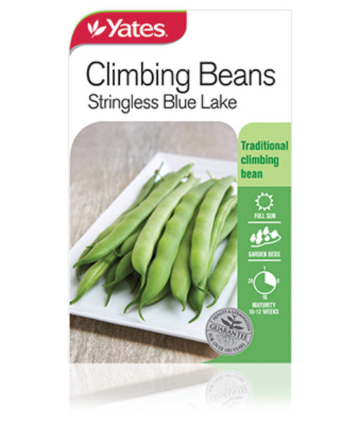 Beans Climbing Stringless Blue Lake - Yates Australia