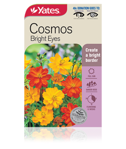 Cosmos Bright eyes - yatesgardening