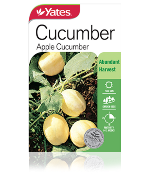 Cucumber Apple Cucumber - yatesgardening