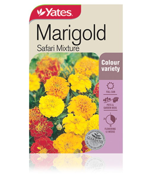 Marigold Safari Mixture - yatesgardening