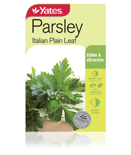 Parsley Italian plain leaf - yatesgardening
