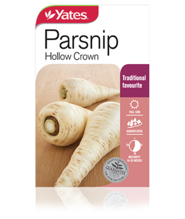 Parsnip Hollow Crown - yatesgardening