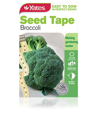 Seed Tape - Broccoli - yatesgardening