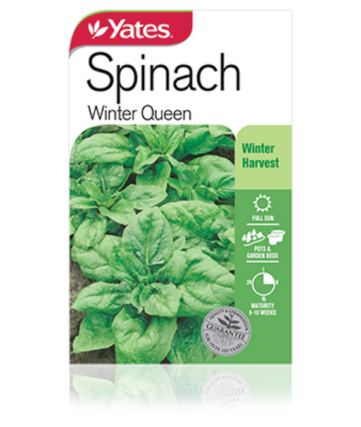 Spinach Winter Queen - Yates Australia
