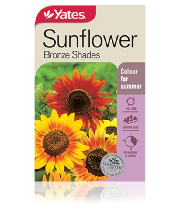 Sunflower Bronze Shades - yatesgardening