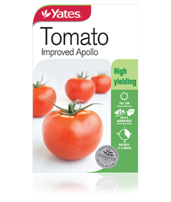 Tomato Improved Apollo - yatesgardening
