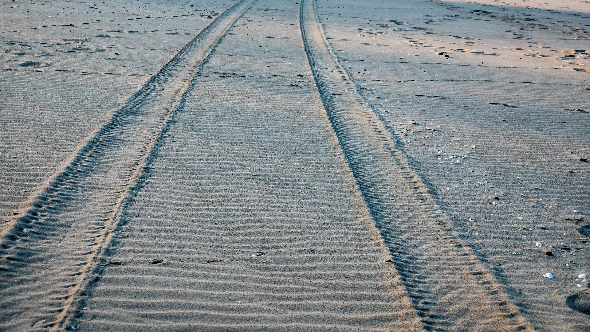 Jeep tracks in sand - Freewaters