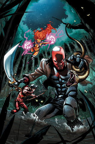 Red Hood and the Outlaws - New 52 Issue #35