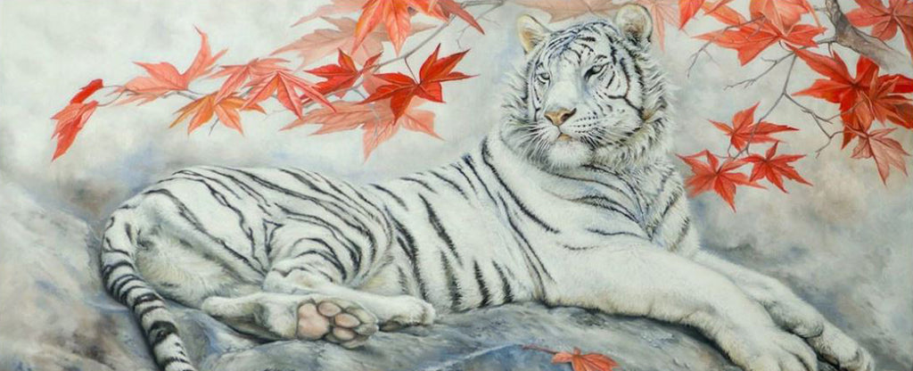 BLACK AND WHITE JAPANESE TIGER